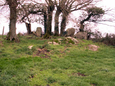 Dolmen de Karlane, commune de Saint Lyphard