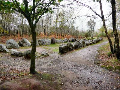 Tumulus de jardin aux moines commune d 39 arzon for Cote et jardin ile aux moines